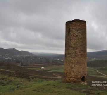 Башня с. Нютюг